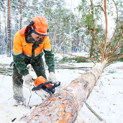 Cutting in Cold Weather