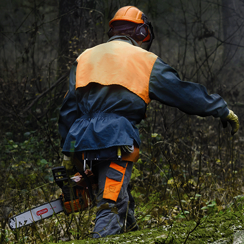 Man carrying chainsaw with DuraCut Guide Bar
