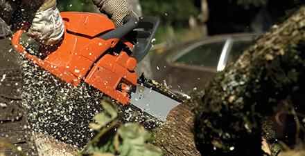 Chainsaw Kickback Explained   Oregon Products