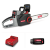 CS300 Chainsaw with 6.0 Ah Battery and C750 Rapid Charger