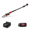 PS250 Cordless Telescoping Pole Saw with 4.0Ah Battery and Charger