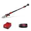 PS250 Cordless Telescoping Pole Saw with 6.0Ah Battery and Rapid Charger