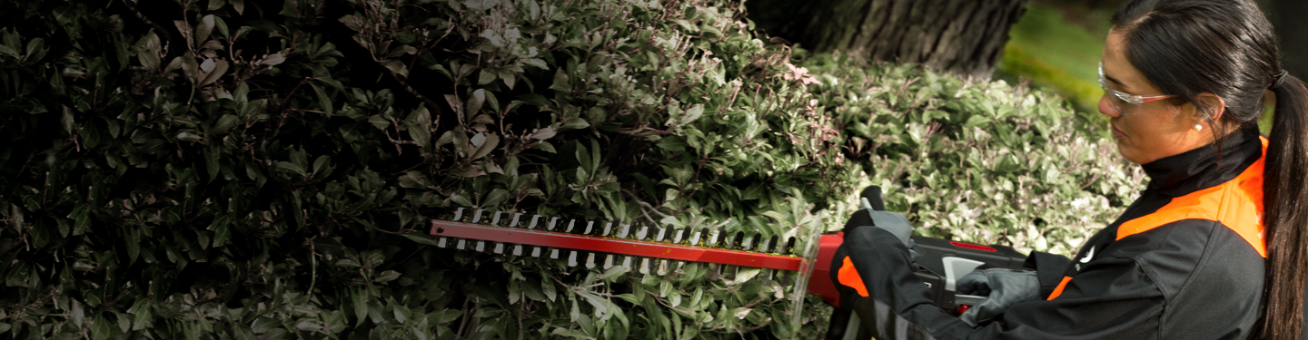 Woman trimming hedge with Oregon HT250 hedge trimmer